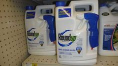 """Monsanto's """"Discredit Bureau"""" (which actually exists) Swings into Action"""