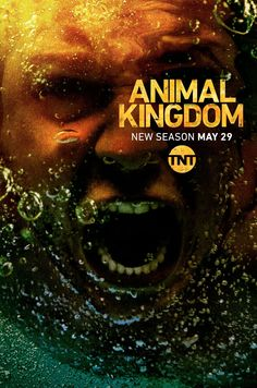 Serie Animal Kingdom Saison 4 Episode 12 en streaming Vf et Vostfr Animal Kingdom Tnt, Kingdom Movie, Sophie Rundle, Alexandra Breckenridge, Ray Donovan, Alexander Ludwig, Julie Andrews, Nathan Fillion, Prison Break