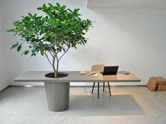 Afbeeldingsresultaat voor co-work tafel pot Concrete Furniture, Home Furniture, Furniture Design, Diy Cement Planters, Wall Design, House Design, Green Office, Decoration Plante, Colourful Living Room