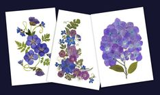 Pressed Flower Cards - Set of 6 Notecards - Blank Stationery