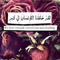 Islamic Daily: Hardship