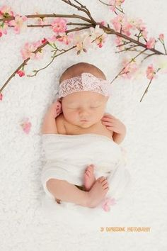 Newborn photography, baby girl, JD Expressions Photography