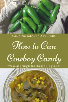 Preserving jalapeno pepper is easy to do. Why not preserve it by putting up Cowboy Candy? This candied jalapeno is a perfect combination of sweet and spicy. Canning Jalapeno Peppers, Canned Jalapenos, Stuffed Jalapeno Peppers, Pickling Jalapenos, Stuffed Banana Peppers, Stuffed Sweet Peppers, Preserving Food, Pickeled Jalapenos, Recipes