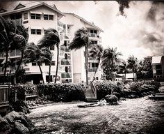 Hyatt Resort Key West on film (Fuji GF670)   JHunter Photo