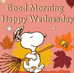 Good Morning -Happy Wednesday - Snoopy and Woodstock Raking Leaves Wednesday Morning Images, Happy Wednesday Pictures, Wednesday Hump Day, Happy Wednesday Quotes, Thursday Images, Wednesday Motivation, Morning Motivation, Good Morning Picture, Good Morning Greetings