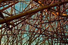 big-bambù-in-rome