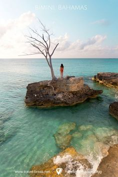 Bimini in the Bahamas -- the perfect beach vacation and only a thirty minute flight from Miami. Travel tips and photos from the travel blog, Travel-Break.net Photo @StephBeTravel @Sean_Ensch_Images