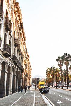 Prachtvoll verzierte Fassaden auf der einen, sommerliche Palmen auf der anderen Seite - #Barcelona ist eine Stadt voller Gegensätze, die einfach nur anziehend ist! #städtetrip #barceloneta