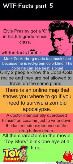 just interesting and zombie one made me think of Darren of course Wtf facts I want to know why the two people that know the coca cola recipe cant ride in the same plane Wtf Fun Facts, True Facts, Funny Facts, Funny Memes, Random Facts, Crazy Facts, Random Stuff, Omg Facts, Random Trivia
