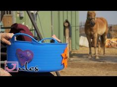 creative velcro signs for your horse accessories Horse Accessories, Toy Chest, Storage Chest, Horses, Signs, Creative, Youtube, Diy, Animals