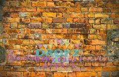 Autumn Bricks  #dropzbackdropsaustralia #backdrop #scenicbackground #dropzbackdrops #backdropsaustralia #photographybackdrop #cakedrops #dropz #photobackground #vinylbackdrop