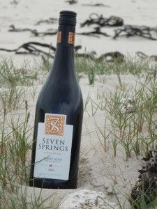 Review of the Seven Springs Pinot Noir by Pieter Rosenthal (www.corkandbottle.co.uk): http://www.corkandbottle.co.uk/innocence-of-youth/#comment-2