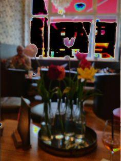 Tulpen im Abendlichr