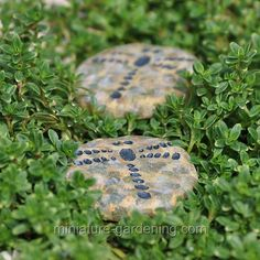 Stepping Stones, Dragonfly, Set of 4 - $5.99