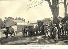 Boer War -- Wynberg military hospital