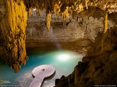 Cenotes, like the Sacred Cenote at Chichen Itza, are the only one source of water in the Yucatan Peninsula Oh The Places You'll Go, Places To Travel, Travel Destinations, National Geographic Wallpaper, Mexico Wallpaper, Chichen Itza Mexico, Exotic Places, Nature Wallpaper, Dream Vacations
