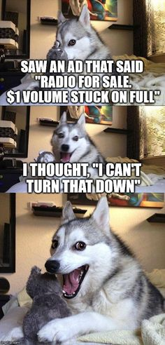 """Bad Pun Dog 