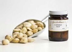 Candlenut oil for hair - candlenut also contains fistosterol that can destroy cholesterol-forming enzyme in the liver, inhibit production of cholesterol .