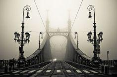 Bridge in Budapest.  Photo by arminMarten.