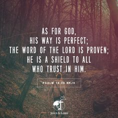 VERSE OF THE DAY As for God, His way is perfect; The word of the Lord is proven; He is a shield to all who trust in Him. Psalm 18:30 NKJV #votd #verseoftheday #JIL #Jesus #JesusIsLord #JILWorldwide