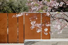 Slabs of fencing - relates to the paneling on the building and creates a privacy screen for the back yard patio