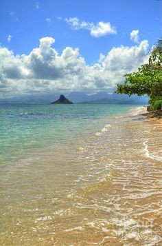 ✮ Chinaman's Hat - Oahu