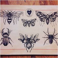 Afbeeldingsresultaat voor black and grey traditional tattoo flash Neue Tattoos, Body Art Tattoos, Sleeve Tattoos, Beetle Tattoo, Bug Tattoo, Trendy Tattoos, Black Tattoos, Small Tattoos, Shin Tattoo