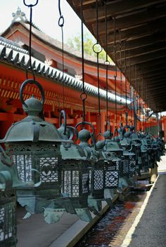 Lanterns - (Kasuga Shrine, Nara, Japan)