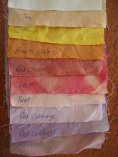 Twenty-first Century Lady: Natural Fabric Dyes