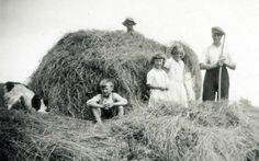 Black and white photo of group of people and dog haymaking at Proncy in the 1930s. This website is a huge catalog of old photographs...it's almost like opening a time capsule. Also, this site: https://historylinksdornoch.wordpress.com/