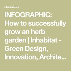 INFOGRAPHIC: How to successfully grow an herb garden | Inhabitat - Green Design, Innovation, Architecture, Green Building