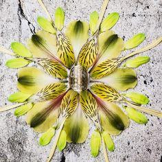Flower of Life ring  #sacredgeometry #accessories  http://saraswatimoon.myshopify.com/search?q=flower+of+life+&search-button.x=0&search-button.y=0