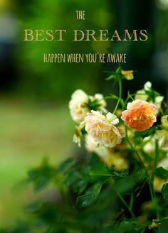 Image of beautiful flowers and positive quote: The best dreams happen when you're awake.