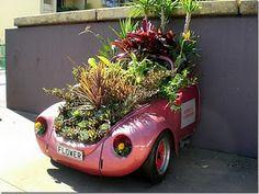 half a volkswagon full of plants
