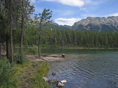 Camping information for Honeymoon Lake Campground with map & directions, includes photo gallery of campground, near Jasper in Alberta Jasper Alberta, Photo Galleries, Happiness, Camping, Mountains, Gallery, Nature, Travel, Campsite