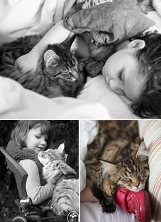 Thula the Maine Coon Cat, the Best Therapy for Iris, the Little Girl with Autism (IX) l #friendship #cat
