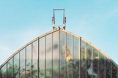samuel-zeller-geneva-botanical-gardens-07.jpg