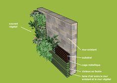 Comment faire un mur végétal  http://www.murmurevegetal.com/mur-vegetal/principes-mur-vegetal