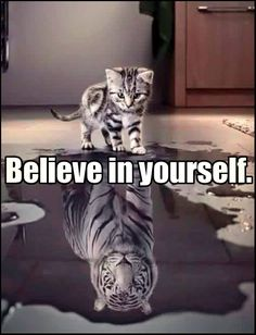 Believe in yourself! The greatest message ever!                              …
