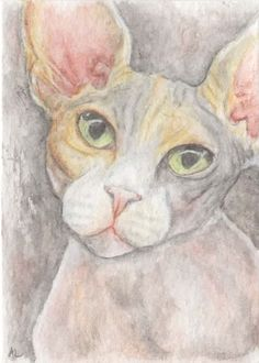 "Ebay, from seller 'ginjamoments' 15/09/15. ""LaLa - Sphynx ACEO Original Mini Drawing"" £10"