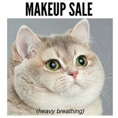 Beauty memes that sum up how we feel about makeup