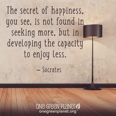 the secret of happiness you see is not found in seeking more, but in developing the capacity to enjoy less ~ Socrates #minimalism