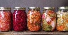 6 Ways Probiotics Help You Solve Digestive Disorders And Reduce Brain Fog