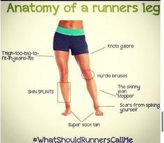 Running Jokes:Anatomy of a Runner's Leg: