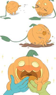 Pumpkin Dog