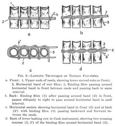 How to tie bamboo together.  Pan-Pipes in Polynesia.