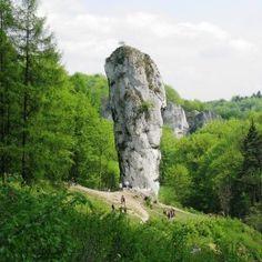 Masz dość miejskiego zgiełku? Ojcowski Park Narodowy zwiedzanie z profesjonalnym przewodnikiem. Piękne szlaki, zamki, jaskinie, niezapomniane widoki.