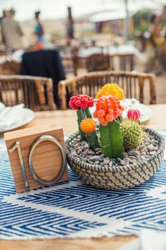 Image result for cactus centerpiece