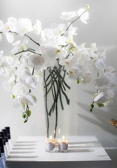 White orchards for my room, accessories, geometric vase. White