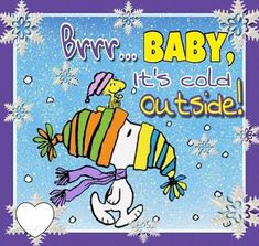 Snoopy and Woodstock Snoopy Images, Snoopy Pictures, Charlie Brown Quotes, Charlie Brown And Snoopy, Peanuts Christmas, Charlie Brown Christmas, Christmas Stuff, Christmas Humor, Peanuts Cartoon